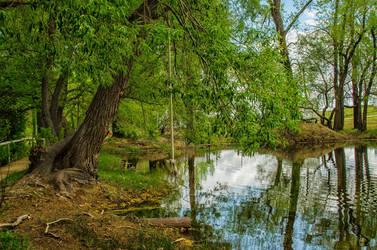 Pond Scenery Stock by mindym306