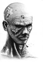 Zombie by csideradam