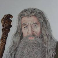 Gandalf the Grey by Theladywolfheart