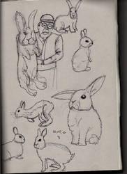 Bunnies by Lemmiwinkx