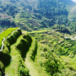 Banaue Rice Terraces by Ubehmonster