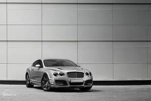 Bentley 6 by adisson-photography