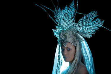 Winter Solstice Rose Headdress by paedess