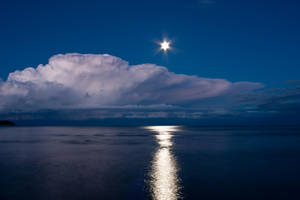 In the light of the night by Uraeus82