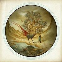 Aloisia Peregrina by Atanasio