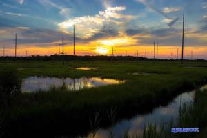 Marsh Sunset by robmurdock