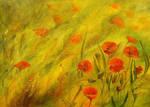 poppys III by modliszqa