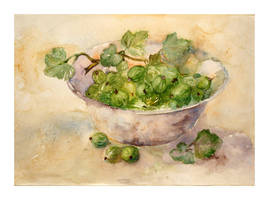 still life with gooseberries by modliszqa