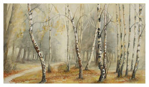 Birch trees in the fog by modliszqa