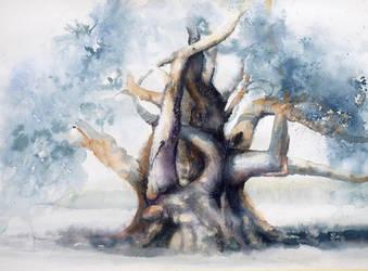 Drzewo wezowe, czyli demoniczna oliwka by modliszqa