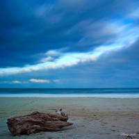 Sea of Loneliness by Peug
