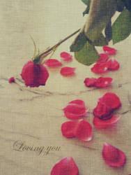 Loving you - Valentine by pooribu