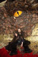 Thorin and Smaug by hizsi