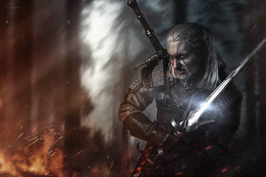 Geralt - empyreumatic situation by hizsi