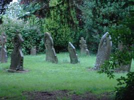 Cemetery 1 by F-L-O-W-E-R-S