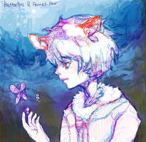 butterflies and fennet fox by tanhuitian