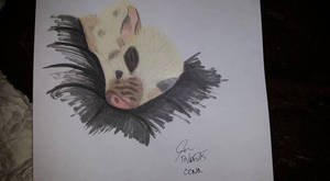 Little Oona by fox0r