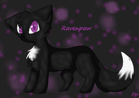 Ravenpaw by TransparentDragon