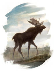 The Moose by AlexPerkins