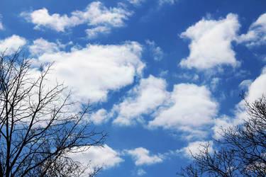 Clouds April 9th 2016   by Musicislove12