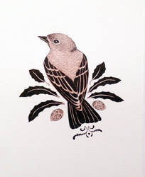 Little Sparrow by JillHoffman