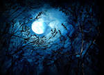 Harvest Moon by Naiils1979