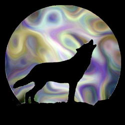 Wolf Shadow-3 by throughmysoulseyes