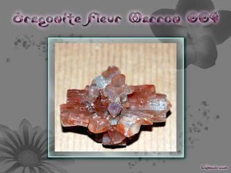 Aragonite Fleur marron 001 by Nemirwen