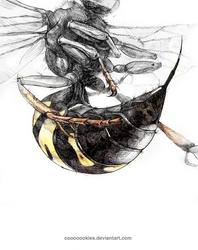 Cicada Killer by Cooooookies