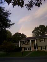 Rainbow by Pointsettia