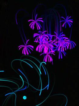Light 7 by Pointsettia