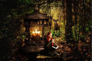 Autumn Moment by jaanavesanen