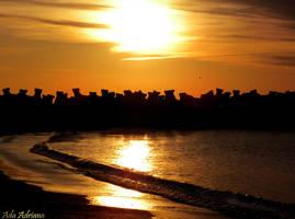 beach sunrise by ada-adriana