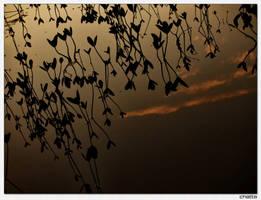 Lake District by Ondro