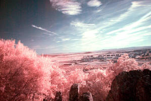 Ir by SchizoChino