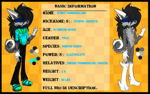 Storm Thunderclash the Husky Reference Sheet + Bio by Libra-Dragoness
