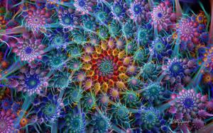 Spiky Spiral by wolfepaw