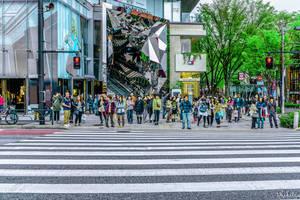 tokyu Plaza - Tokyo by Rikitza