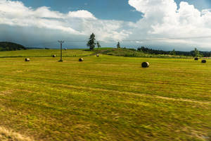 Czech paradise - view from the bus by Rikitza