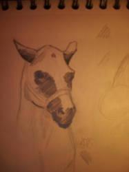 Horse Study by Kallopsia
