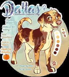 Dallas Pumpkin by Toucat