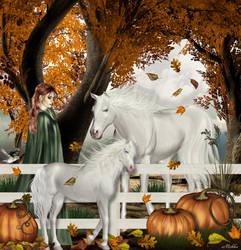 Splendeur d'automne by Michka2