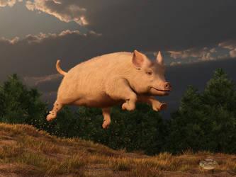 Racing Pig by deskridge