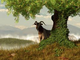 Hide and Goat Seek by deskridge