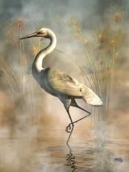 Egret by deskridge
