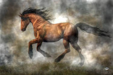 Horse by deskridge