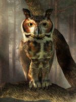 Great Horned Owl by deskridge