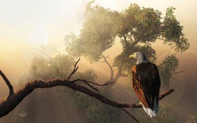 Eagle Dawn by deskridge
