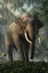 Jungle Elephant by deskridge
