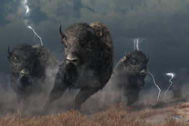 Buffalo Storm by deskridge
